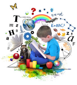 Nild educational therapy